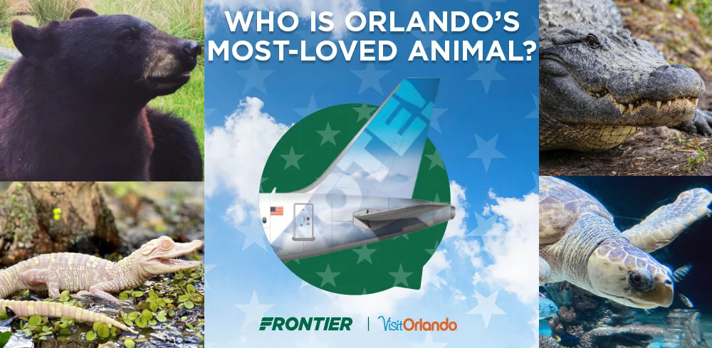 Vote for an Orlando Animal to Take Flight on Frontier Airlines